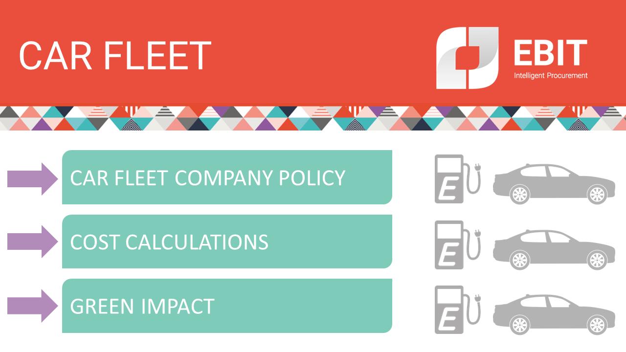 Car fleet. Car fleet company policy, cost calculations, green impact.